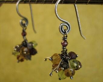 Multi-Gem Cluster Earrings
