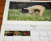 Equinox Farm Photo Calendar