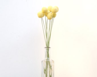 Craspedia Yellow, billy button ball flowers wool felt felted home decor bridal bouquet wedding pom pom floral arrangement everlasting Spring