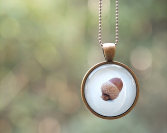 Acorn Necklace - Wearable Art Photo Pendant - Autumn Necklace for Woodland Lovers - Magical Nature Jewlery Series