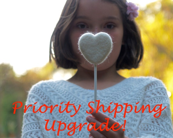 Priority Shippng Upgrade - purchase this upgrade if you need me to ship your item Priority Mail (within the USA)