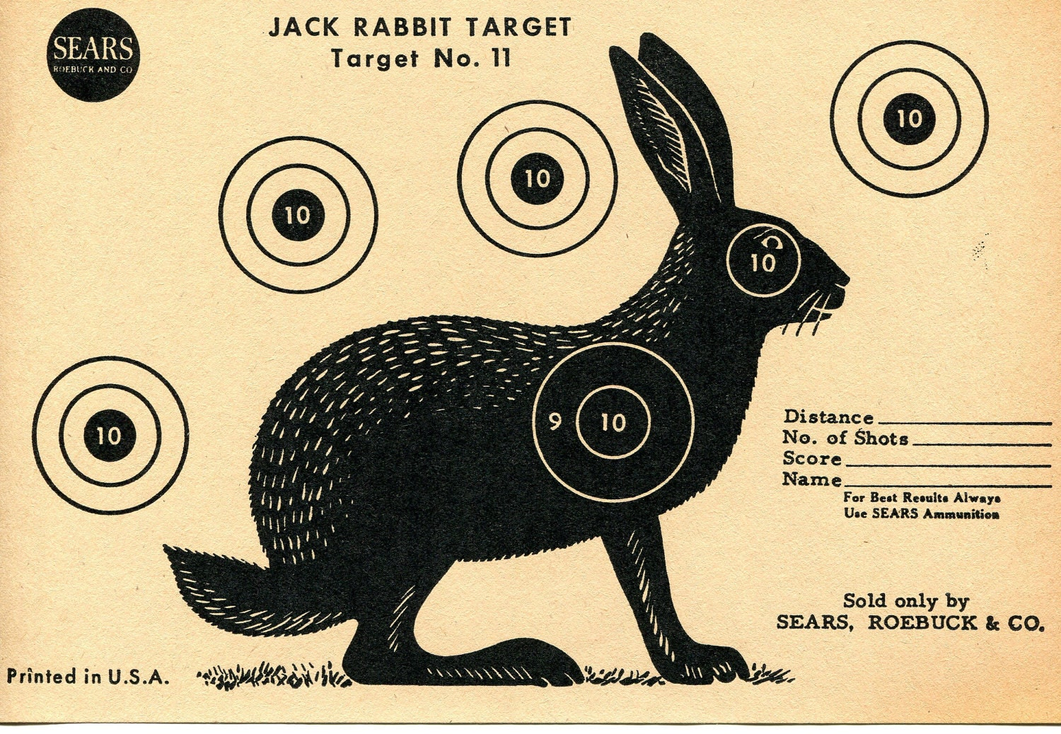 Tactueux image throughout printable animal targets