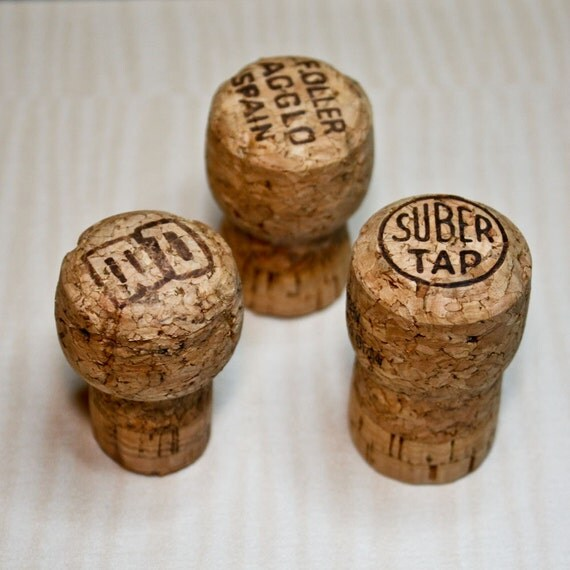 Champagne Cork Magnets - (For Angela)