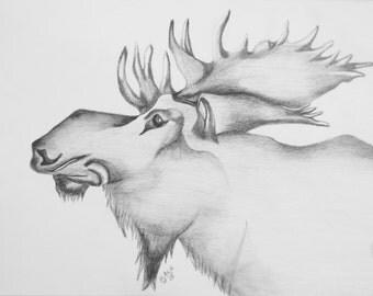 Hand Drawn in Graphite Moose Art Print 8 X 10