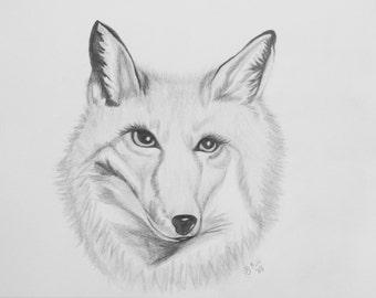 Hand Drawn in Graphite Fox Art Print 8 X 10