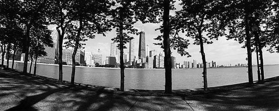 Chicago Skyline from Olive Park (Summer): Black and White Photo