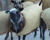 Silvery Black Shetland Wool Roving- Four Ounces