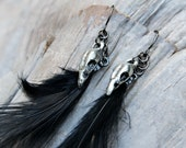 Raven skull earrings - black feathers, raven skull charms, gunmetal earwires - goth rocker Halloween -  free shipping USA