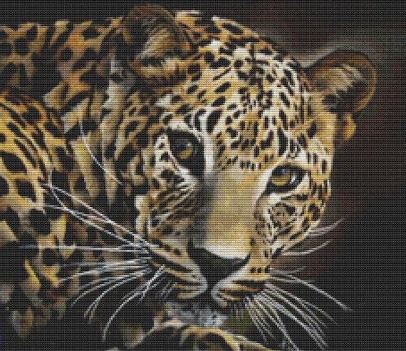 """Leopard cross stitch art by April Rafko """"Spell Bound"""" cross stitch kit - Big Cat"""