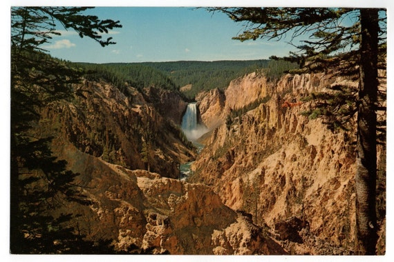 Grand Canyon of the Yellowstone Giant Souvenir Scenic Postcard Vintage 1950s