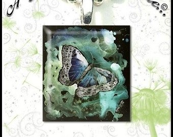 Blue and Green Butterfly