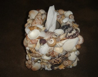 Seashell Tissue Box