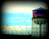 8x10 Detroit Zoo Watertower Fine Art Photograph on Metallic Paper