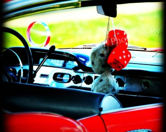 Fuzzy Dice - Fine Art Photographic Print