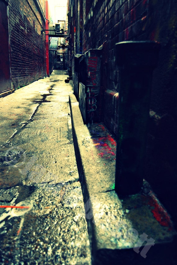 Graffiti Alley Ann Arbor Fine Art Photograph on Metallic Paper