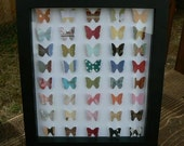 Harmless Butterfly Collection - Intrinsic Art