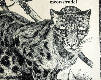 Antique Print of Leopards, Cheetah, Jaguars, Lynx, and other Cats - 1898 German Vintage Print