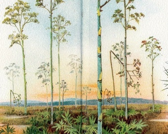 1897 Vintage Botanical Print of Steppe Plants - Chromolithograph