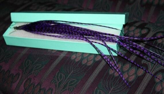 Purple Zebra - Ultra long Grizzly Rooster Feather Pierced Earrings