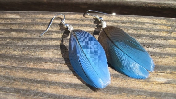 Very small Feather Earrings - Parrot Feather Earrings perfect for a child  - The little parrot