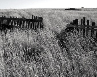The Sea Ranch  - northern California - 16x20 fine art photograph - black and white