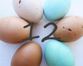 Wooden Easter eggs 12 ONE DOZEN Heritage breed chicken eggs- eco friendly- Waldorf toy