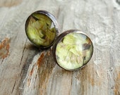 yellow wildflower sterling silver & glass studs