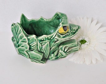 Green McCoy Painted Eyes Frog On A Log Planter