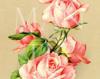 11 - romantic roses