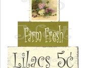 Large U-Print Digital Decoupage Sheet For Front Of Shelf Sitter Chunkie Wood Blocks , Farm Fresh Lilacs 5 , Vintage Lilacs Image
