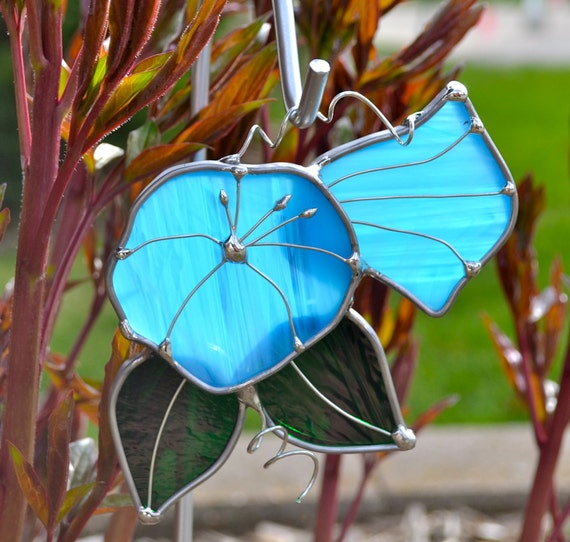 Blue Morning Glory  Stained Glass Suncatcher