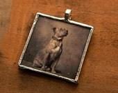 Vintage photo pitbull pendant