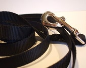 10 Foot Nylon Training Leash  - Collars With Curb Appeal