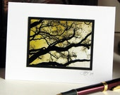 Branching Out Blank Note Cards