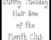 Hair Bow of the Month Club - 12 months of stacked boutique hair bows