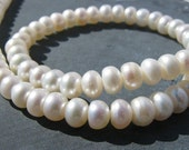 AA White Freshwater Pearl buttons, FULL strand, 6.5mm DEAL