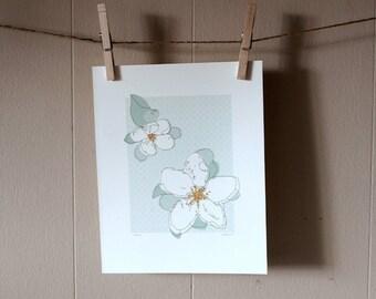 AppleBlossom-Blue 8x10 Print