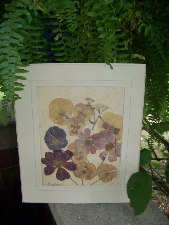 Vintage pressed pansy picture
