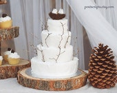 "15"" Rustic Wood Tree Slice Wedding Cake Base or Cupcake Stand for your Event and Party or even a Newborn Photo Prop - Slab Guest Book"