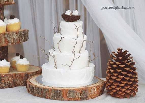 15 Rustic Wood Tree Slice Wedding Cake Base Or Cupcake