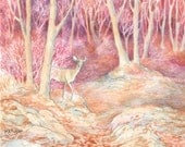 Autumn Doe, Open Edition Print, Matted in Beige