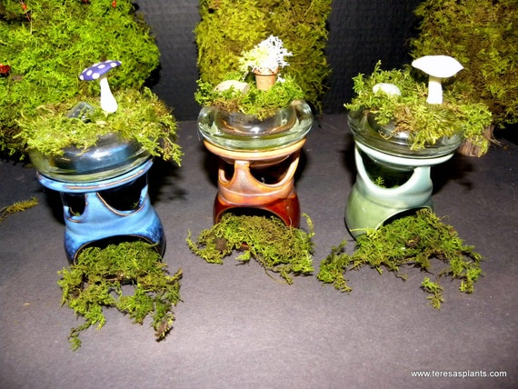 SALE-Pagoda style Moss terrarium-Preserved moss NO WATER needed here-Ceramic and glass home decor