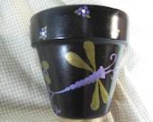 Purple Dragonflys