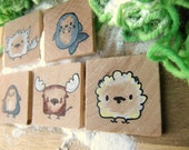 The Polar Animals - 5 Unique Wooden Magnets