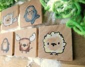 The Polar Animals - 5 Unique Wooden Magnets