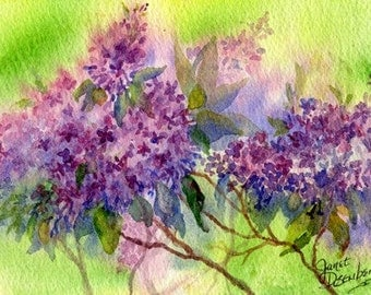 Lilacs, Flowers, Purple, Floral, Colorful, Spring- Green, Watercolor, Spring, Day-time, Plant,Garden, Fine Art Print by Janet Dosenberry