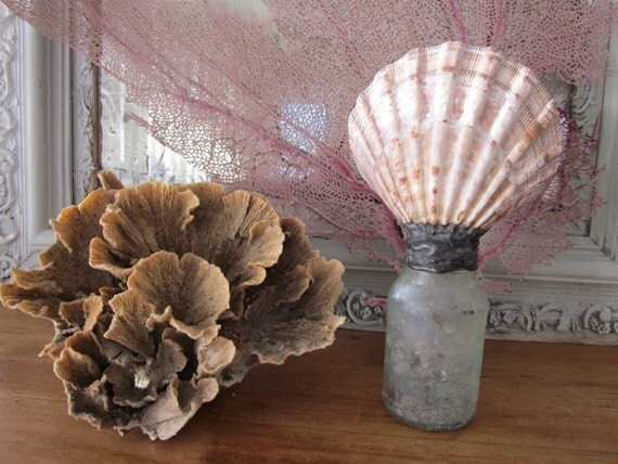Ocean sea life bottle sculpture