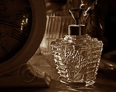 Vintage Perfume Bottle (Still Life in Sepia) - 8 x 12 Fine Art Photograph - FREE SHIPPING