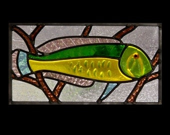 Curiouser fish 1 Stained Glass Panel
