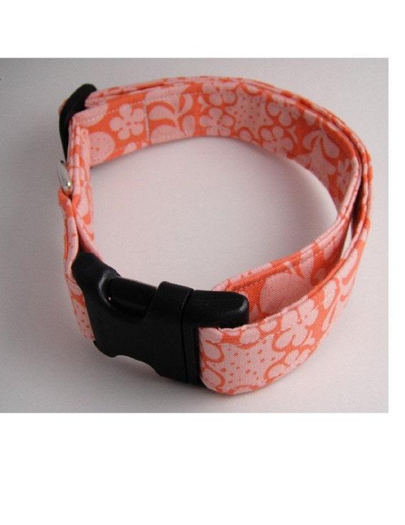 Dog Collar: Savannah- Sugar Plum Collars Adjustable Dog Collar